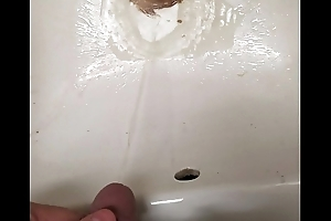 Toilet and sink pee